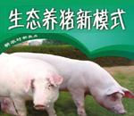 现代生态养猪技术详解