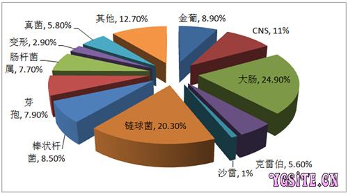 北方地区奶牛临床乳房炎病原流行状况分析