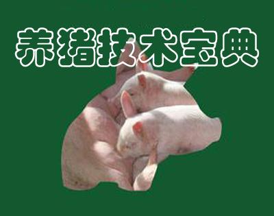 养猪技术宝典