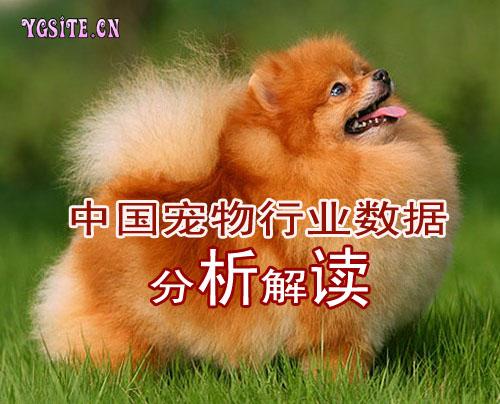 中国宠物行业数据分析与解读