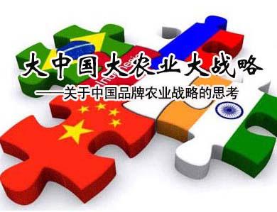 刘奇:大中国大农业大战略
