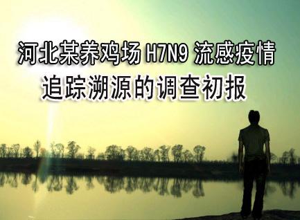 河北某养鸡场H7N9流感疫情追踪溯源的调查初报
