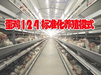 """湖北省蛋鸡""""124""""养殖模式"""